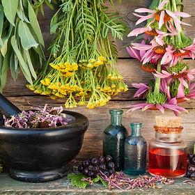Eastbourne Clinic of Natural Medicine Herbal Medicine