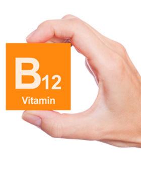 B12-2.jpg