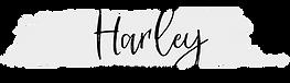 logo black on grey-01.png