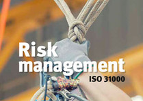 Update to ISO 31000 (2018) observations # 2 – principles or Risk Management