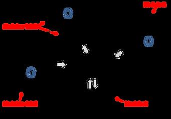 Educate Diagram.png