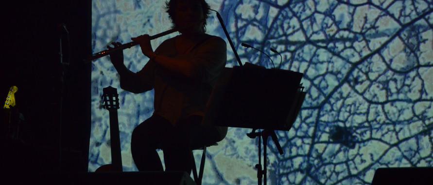 Flauta, loops...