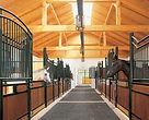 Pferdesportzentrum Haus Rott 8.jpg