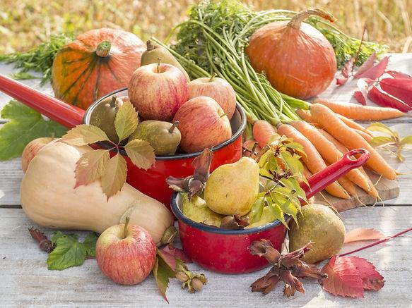 panier-recolte-automne.jpeg
