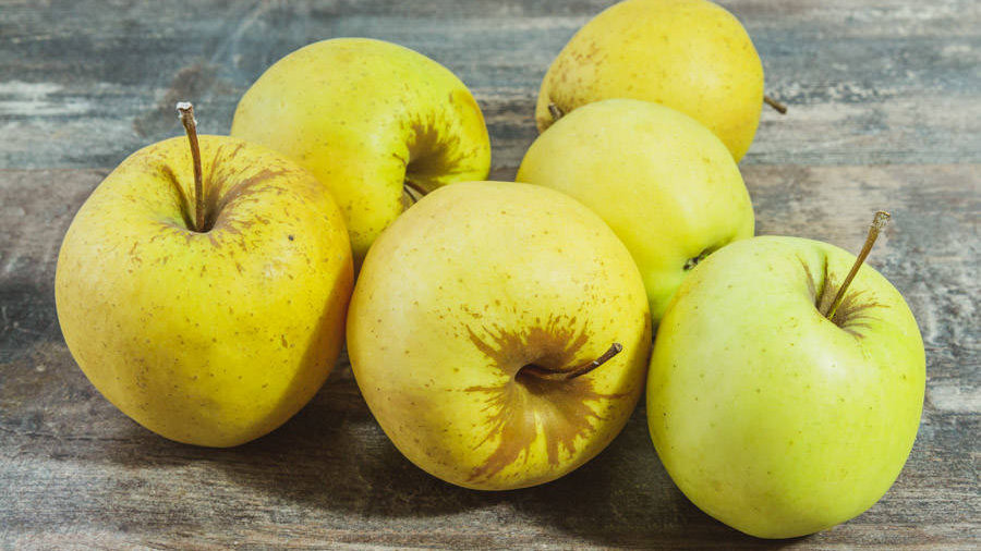 Pommes Golden 1kg