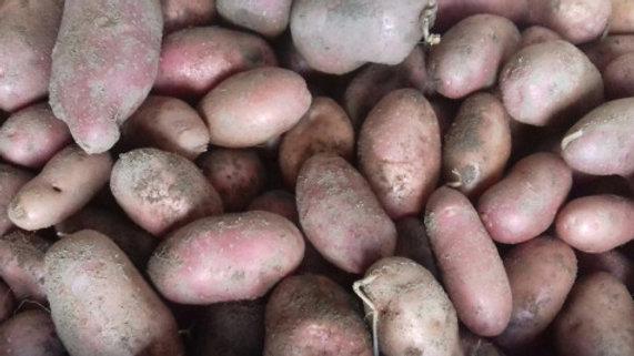 Pommes de terre variété Amandine 1kg