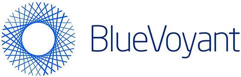BlueVoyant%20Logo%20Blue_edited.jpg