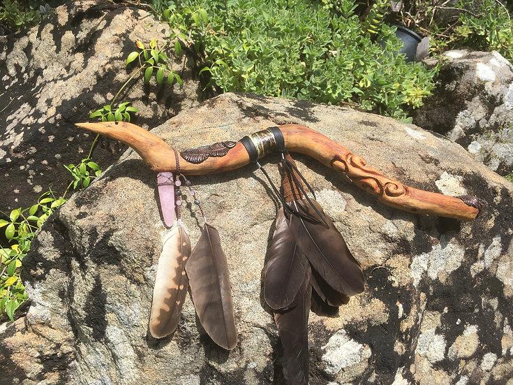 Hawk Talking Stick