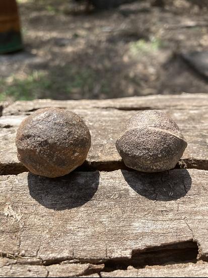 Shaman Balls