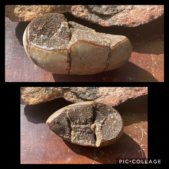 Brown Septarian Egg