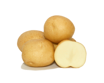 Sifra Potatoes
