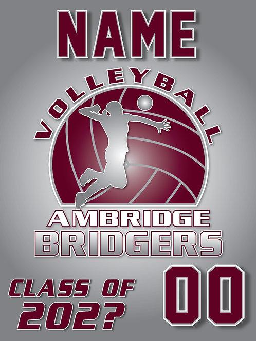 2020 Ambridge Girl's VB Yard Sign