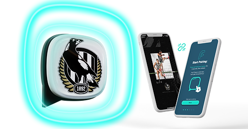 Fanzio Button and app screens.png