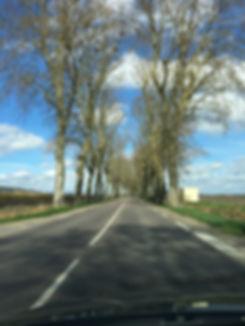 ruta-2_orig_borgoña.jpg