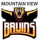 Mountain View logo.JPG