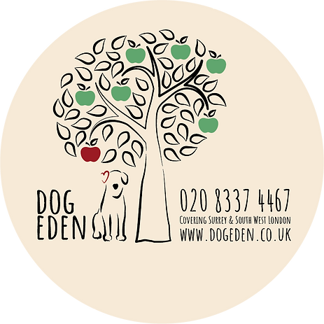 Dog Eden New Phone No.png