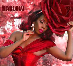 Harlow Pinup & Boudoir Photography with Female Photographer | Naperville & Chicago IL Best Makeup artist | Magazine Publisher | Women Owned Business|Retro Lovely Magazine |Wardrobe Stylist | Set Designer |modeling opportunitiy |old Hollywood image | Burlesque Costumer