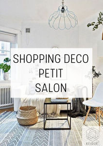 Shopping Deco Comment Amenager Un Petit Salon