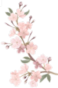 blossoms2.png