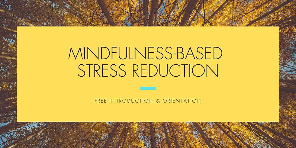 Free Introduction: Mindfulness-Based Stress Reduction