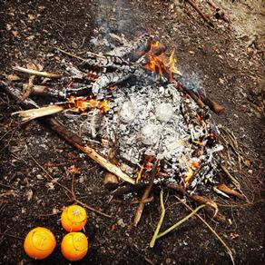 Schoggi Orangen Kuchen