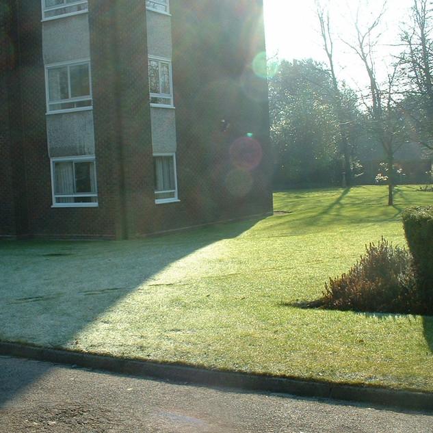 Grass Cutting Edges