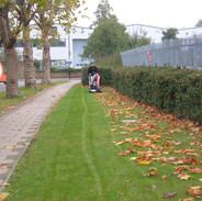 Grass Cutting During