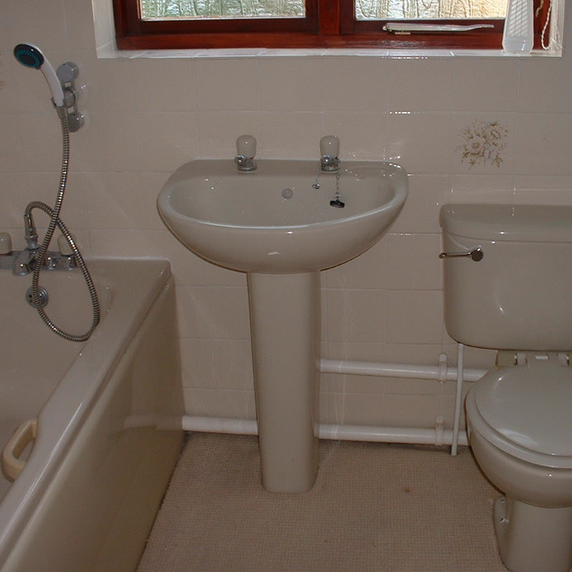 Bathroom Sanitation