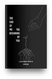 The End of Me The Beginning of You book