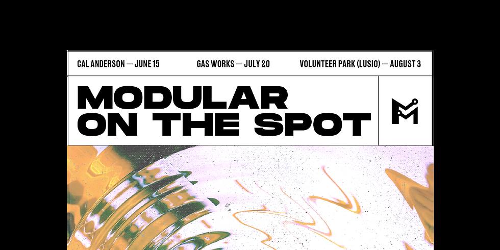Modular on the Spot (LUSIO)