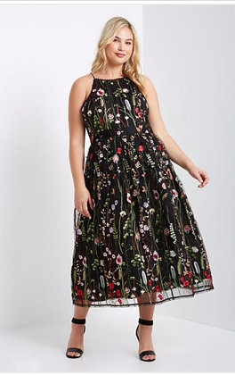 Lovely Rosa Embroidered Mesh Maxi Dress