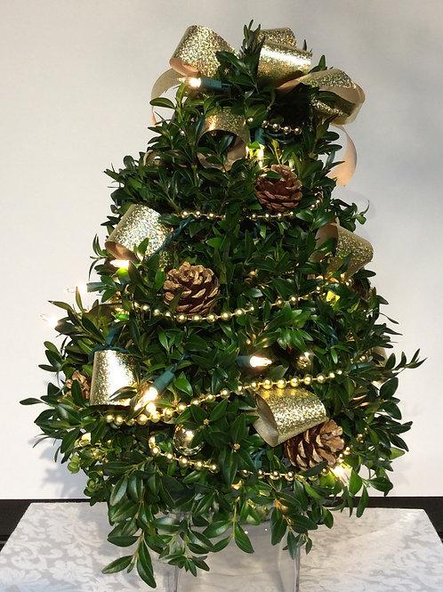 Boxwood Tree (Gold Ribbon)