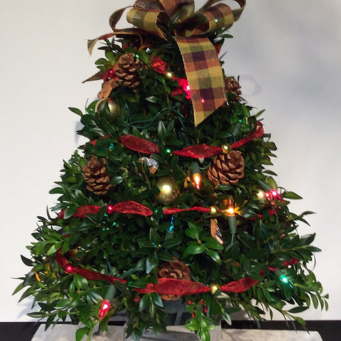 Boxwood Tree (Gingerbread, Clear Lights)
