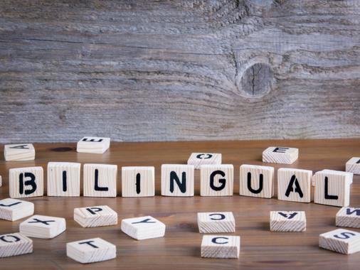 O que é Bilinguismo?