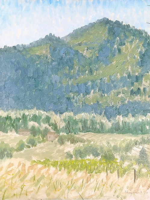 Sieve River Valley nearNipozzano, Italy