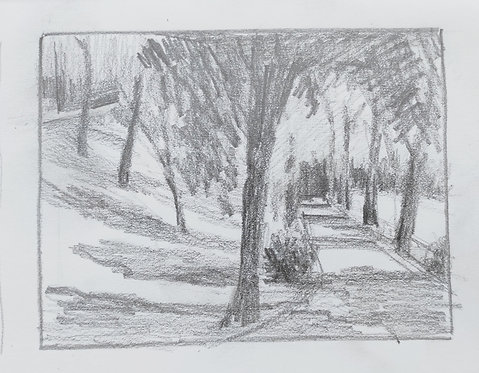 Sketch of Parco di Villa Strozzi, Florence