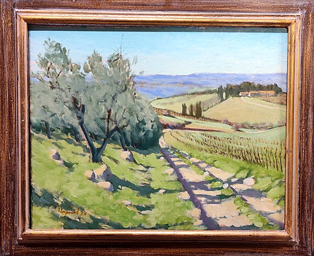 Hills near San Michelle a Tori, Italy