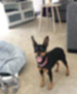 Roxi at Kylies.jpg