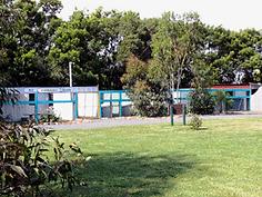 Shiralea pet resort
