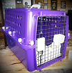 Purple%20crate%20_edited.jpg