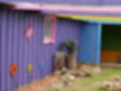 Colourful cattery