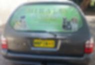shiralea pet taxi