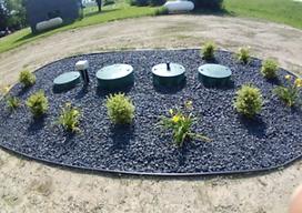 plants w septic.png