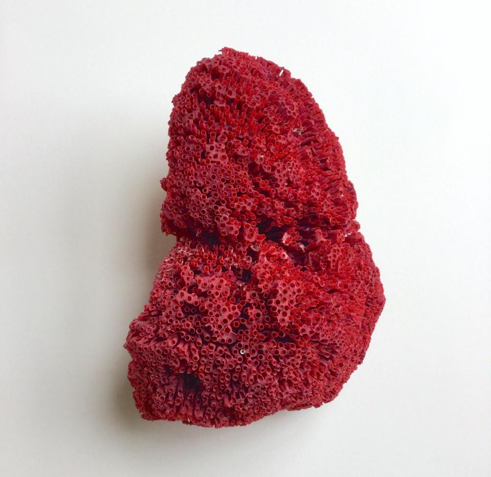 Corail rouge, 2018, 73*100cm, Véronique