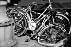 vélos_LJ.jpg