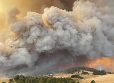Terrible bushfires events throughout Australia