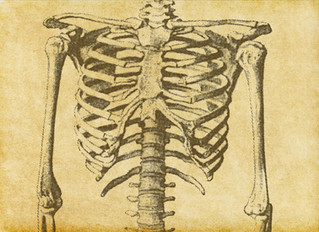 Osteoporosis--It Can Be Serious Business