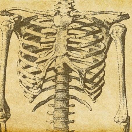 Osteoporosis Myths