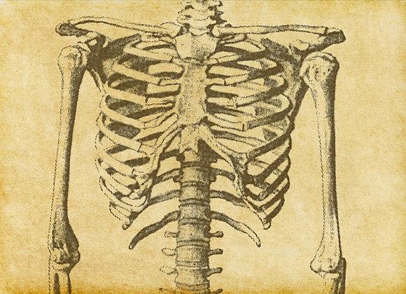 Skeleton Scherzo - Digital Download