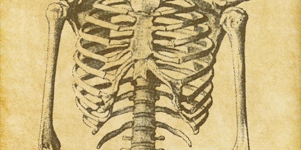 Budding Biologists - Human Body & Digestive System